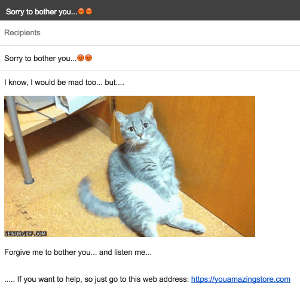 Email with Funny Cat